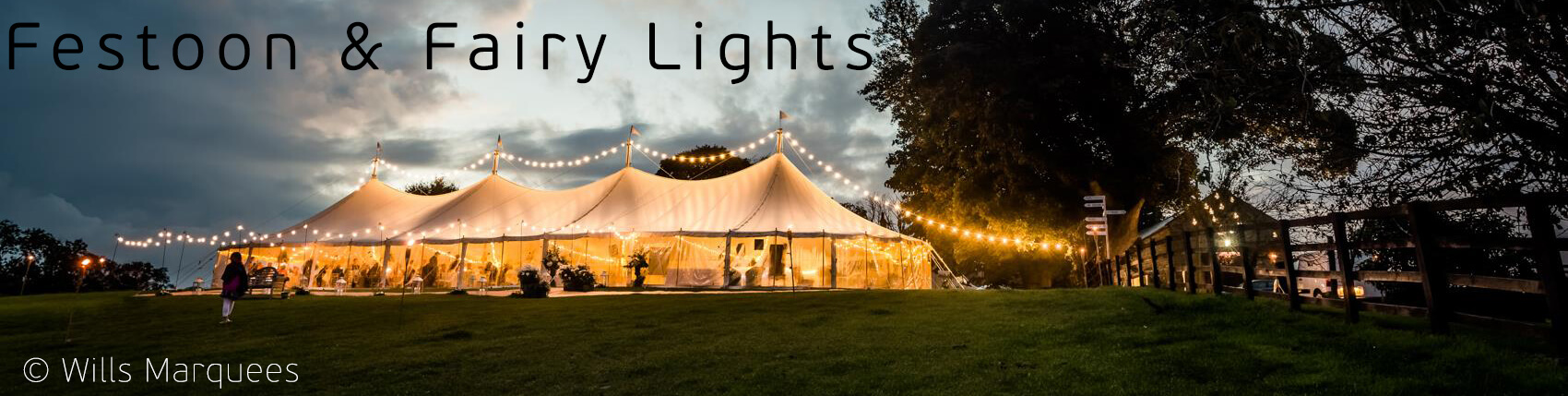 Festoon & Fairy Lights