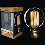 60W Squirrel Cage Filament Globe ES